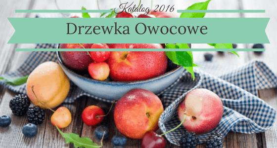 Drzewa i Drzewka Owocowe - Szkółka Drzew i Krzewów owocowych katalog 2016